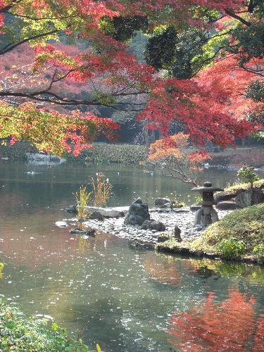 2010_1125小石川記録0017.JPG